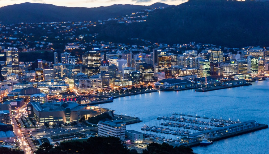 Wellington City at dusk from Mount Victoria