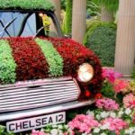 RHS Chelsea Flower Show ~ May 2019