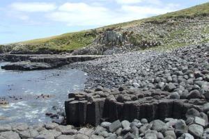 Basalt Columns1 - Chatham island
