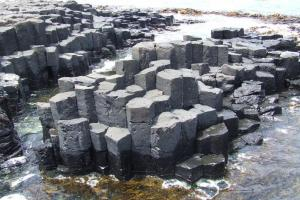 Basalt Columns - Chatham island