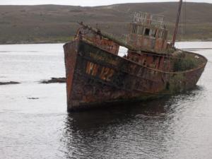 Thomas Currell - Chatham island