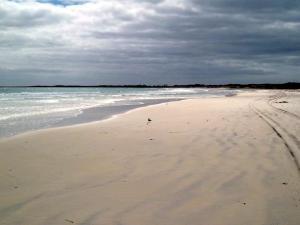 Waitangi West beach - Chatham Island